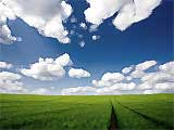 Moonraker Forest Rally 2010